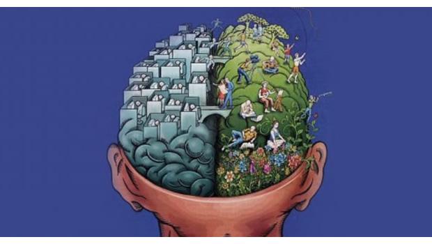 Overdose de carpe diem e os Fenômenos da Neuroplasticidade