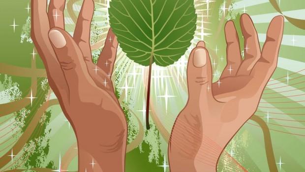 A Ecologia e o Espiritismo